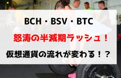 BCH・BSV・BTC怒涛の半減期ラッシュ!仮想通貨の流れが変わる!?