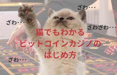【人気記事】猫でもわかるビットコインカジノのはじめ方